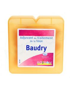Boiron Baudry Pâte à sucer. Pot 70g