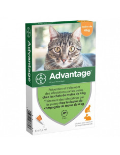 Advantage chat et lapin -...